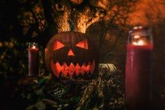 Halloween Night Picnic Jack O' Lantern. Halloween jack o' lantern pumpkin night picnic scene with candles and spooky tree background Royalty Free Stock Image