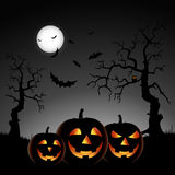 Halloween night with pumpkins on gray background Stock Photo