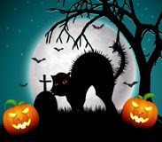 Halloween night with pumpkins and scary cat Stock Photo