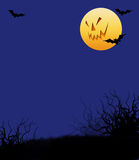 Halloween Night With Scary Moon Face Stock Photo