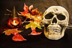 Halloween night with scary skull. Celebrating Halloween night with scary human skull and pumpkin decoration Stock Image