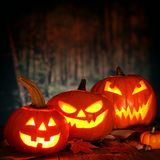 Halloween night scene with Jack o Lanterns against a spooky background Royalty Free Stock Photography