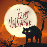 Halloween night scene with mad cat on spooky background, Vector Illustration Royalty Free Stock Images