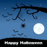 Halloween Night - Spider Web and Bats Royalty Free Stock Photography