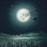 Halloween night on the spooky meadow. Stock Photo