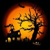 halloween noc Obraz Stock