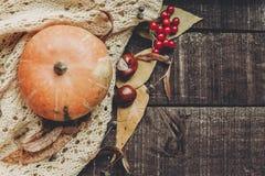 Halloween o endecha del plano de la caída de la tarjeta de felicitación del concepto de la acción de gracias B Fotos de archivo libres de regalías