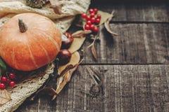 Halloween o endecha del plano de la caída de la tarjeta de felicitación del concepto de la acción de gracias B Imagen de archivo libre de regalías