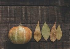 Halloween o endecha del plano de la caída de la tarjeta de felicitación del concepto de la acción de gracias B Foto de archivo