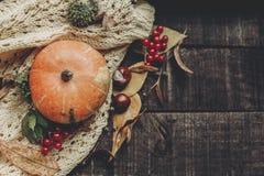 Halloween o endecha del plano de la caída de la tarjeta de felicitación del concepto de la acción de gracias B Imagenes de archivo