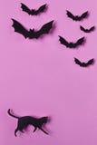 Halloween od tła blasku księżyca uwagi Papercut kot i nietoperze Odgórny widok z kopii przestrzenią Obrazy Royalty Free