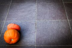 Halloween od tła blasku księżyca uwagi Rozjarzony pumpkinon zmrok ziemia Zmrok obrazy royalty free