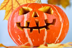 Halloween, old jack-o-lantern on blue Royalty Free Stock Image