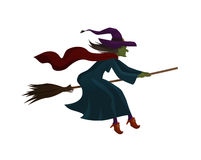 Halloween. Old witch flying on broom. Vector illustration Stock Image