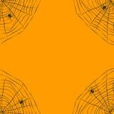 Halloween orange background with spider web Stock Images