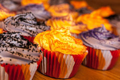 Halloween Orange and Black Cupcakes Royalty Free Stock Images