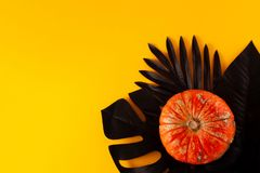Halloween orange decorative pumpkin on a hand-painted black monstera and fern. royalty free stock photography