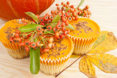Halloween-orange Kürbiscupkuchen Stockfoto