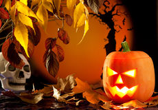 Halloween orange pumpkin on autumn leaves Royalty Free Stock Images