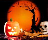 Halloween orange pumpkin on autumn leaves Royalty Free Stock Photo