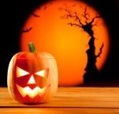 Halloween orange pumpkin on autumn leaves Stock Photos