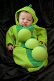Halloween Outfit stock images
