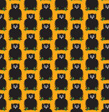 Halloween owl backgrounds pattern seamless Stock Images
