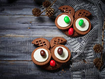 Halloween owl cookies for party. Selective focus Royalty Free Stock Photos
