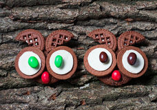 Halloween owl cookies for party. Selective focus Stock Image