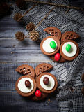 Halloween owl cookies for party. Selective focus Royalty Free Stock Image