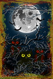 Halloween owl moon Background Stock Photography