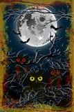 Halloween owl moon Background Stock Photography