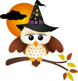 Halloween Owl Stock Photo