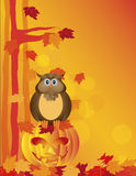 Halloween Owl Sitting en la calabaza en Forest Illustration Foto de archivo libre de regalías