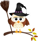 Halloween owl with witch broom Royalty Free Stock Photos