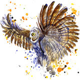 Halloween Owl Witch. Watercolor illustration background Royalty Free Stock Images