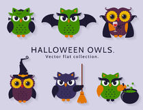 Halloween owls. Vector set. Happy Halloween! Vector owls are dressed in costumes of witch, vampire, bat and other traditional spooky characters of Halloween Stock Image
