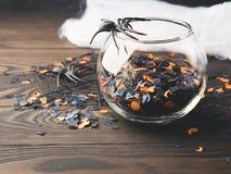 Halloween-partijconfettien en spinnen op dark Stock Foto's