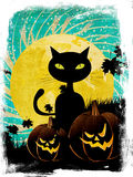 Halloween party background with cat Stock Photos
