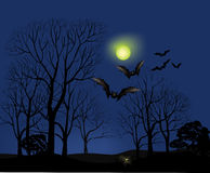 Halloween Party Background. Forest at moon light Royalty Free Stock Photography