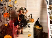Halloween party and celebration. Girl with happy and flirty face. Halloween party and celebration concept. Girl with happy and flirty face on spooky carnival stock photography