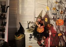 Halloween party and celebration concept. Kid in witch hat. And costume holds big jack o lantern. Little witch with Halloween decor. Girl with dreamy face on stock image