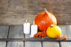 Halloween party decor. Beautiful orange pumpkin Royalty Free Stock Photos