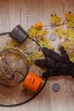 Halloween party female outfit accessories: glove, hat. Flat lay, top view royalty free stock image