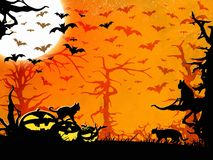 Halloween party orange background, trees, bats, cats and pumpkins Royalty Free Stock Photos