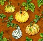 Halloween pattern. kurbis pumpkin seamless design. Autumn pattern. seamless pumpkin design. very beautiful botanical illustrations Royalty Free Stock Photography