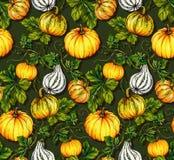 Halloween patterns. kurbis pumpkin seamless design. Halloween pattern with illustrated pumpkins. Botanical illustration. dark green background, orange kurbis Stock Photography