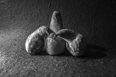 Halloween Pears Stock Images