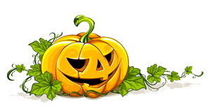 Halloween picture Royalty Free Stock Image