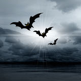 Halloween picture with bats Royalty Free Stock Photography